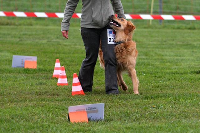 Concours de Rallye Obedience