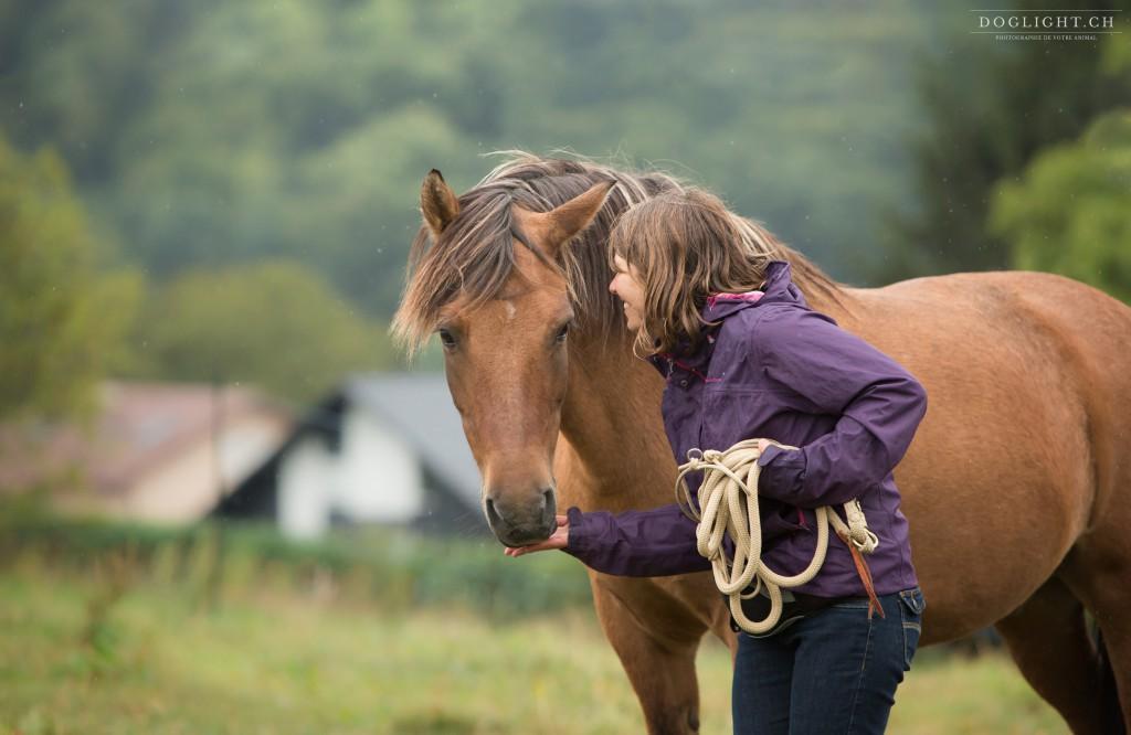 Le premier exercice à faire au clicker training avec son cheval : la politesse