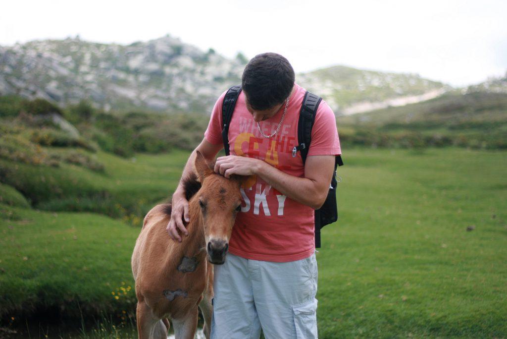 Voyage en Corse : Plateau de Coscione