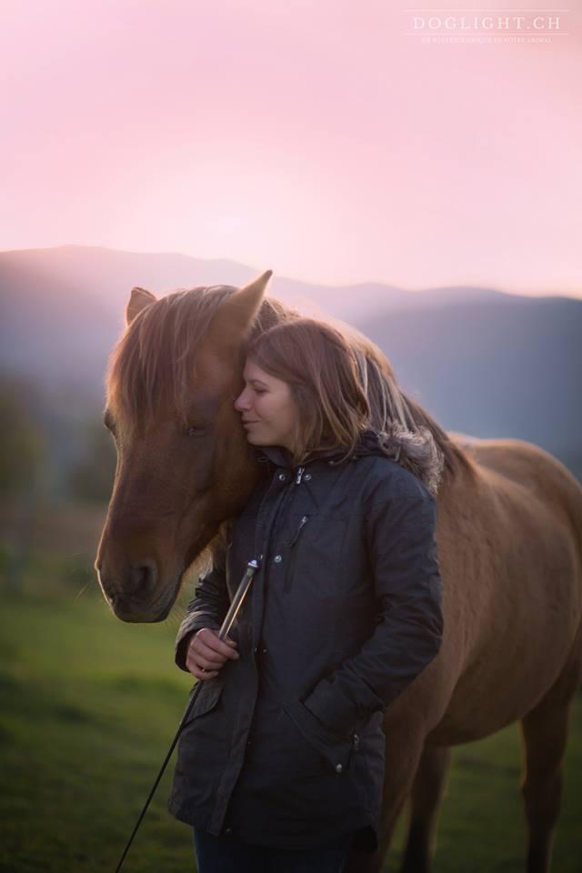 Travail à pied : entrainer son cheval en matérialisant avec des cônes