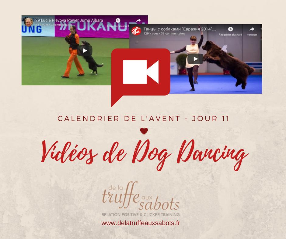 Chorégraphies de Dog Dancing (Obé-Rythmée)