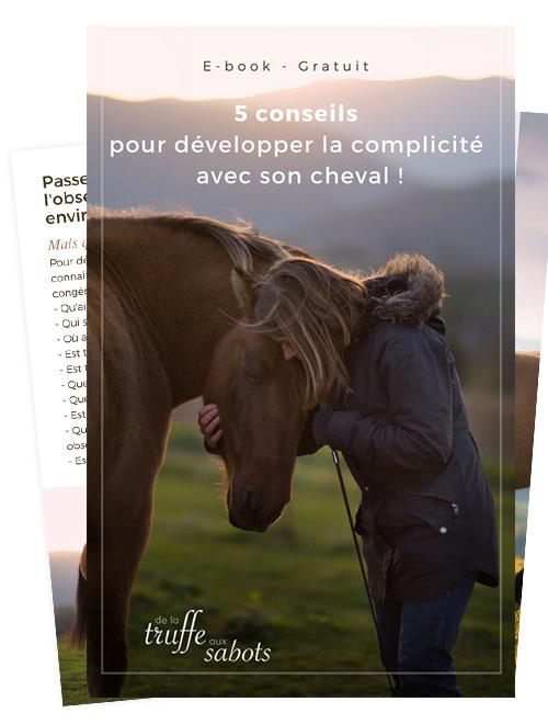 créer du lien et de la complicité avec son cheval