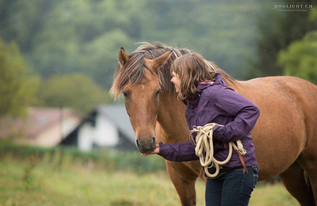 Comment motiver son cheval ?