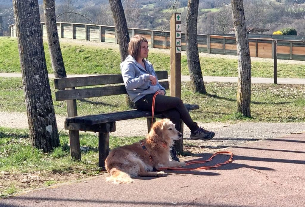 Apprendre à son chien à être calme, zen, relax