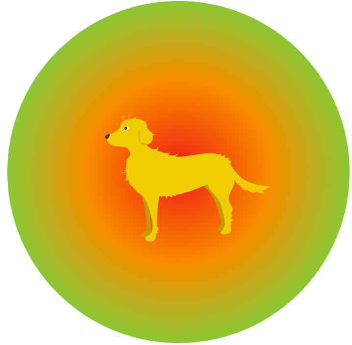 La zone de confort du chien